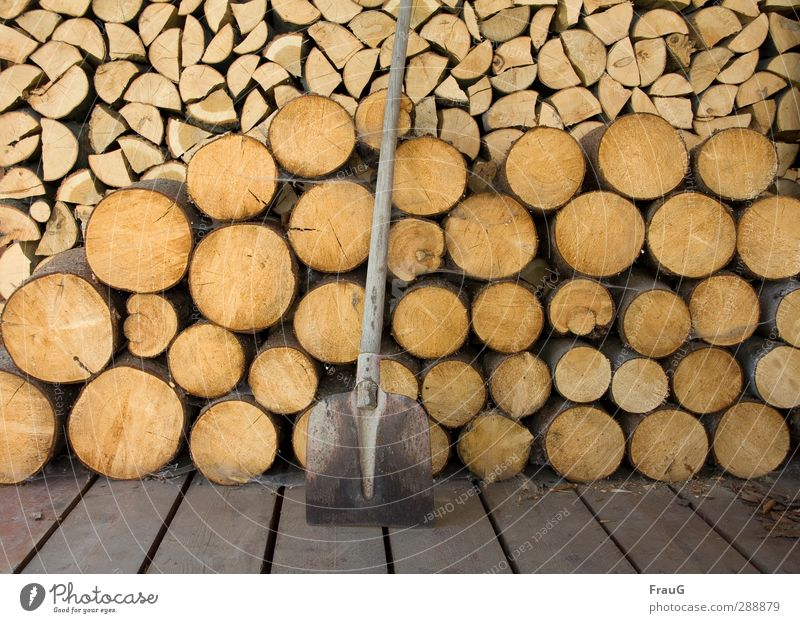 fartight Shovel Wood Work and employment Brown Safety (feeling of) Warm-heartedness Orderliness Effort Nature Firewood Chop sawn Stack Colour photo