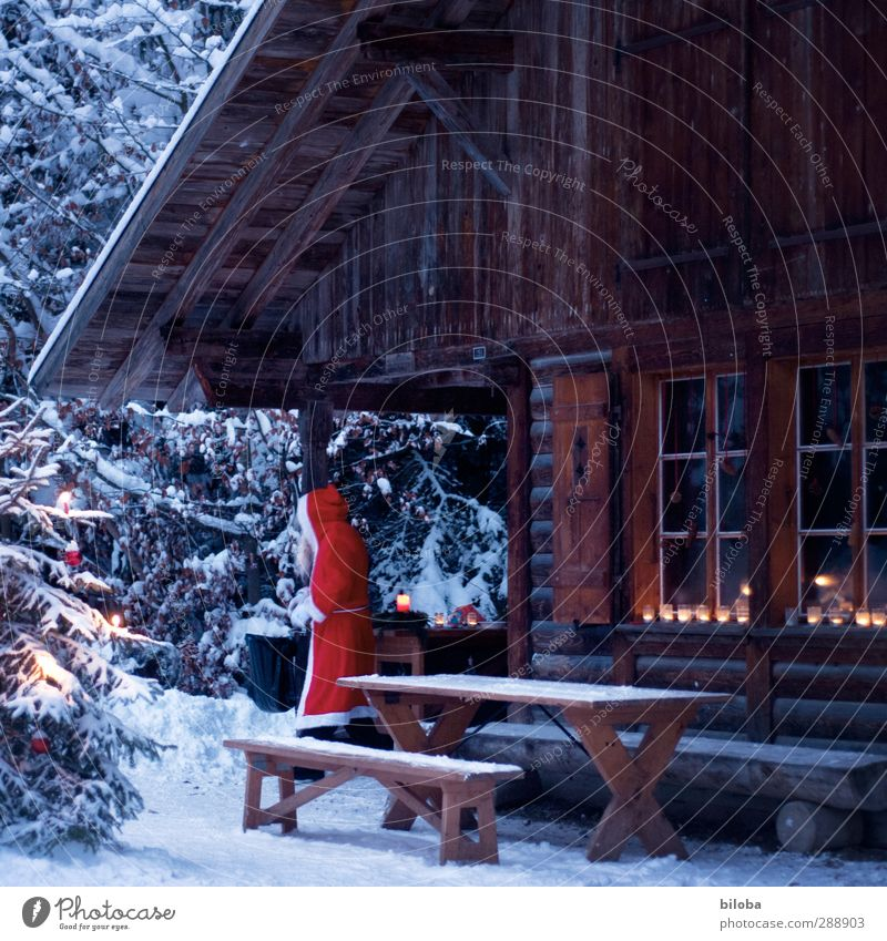 At home with Santa Claus Human being Masculine 1 Hut Christmas & Advent december 6th Brown Red White St. Niklas Candle Light Forest Christmas tree Colour photo