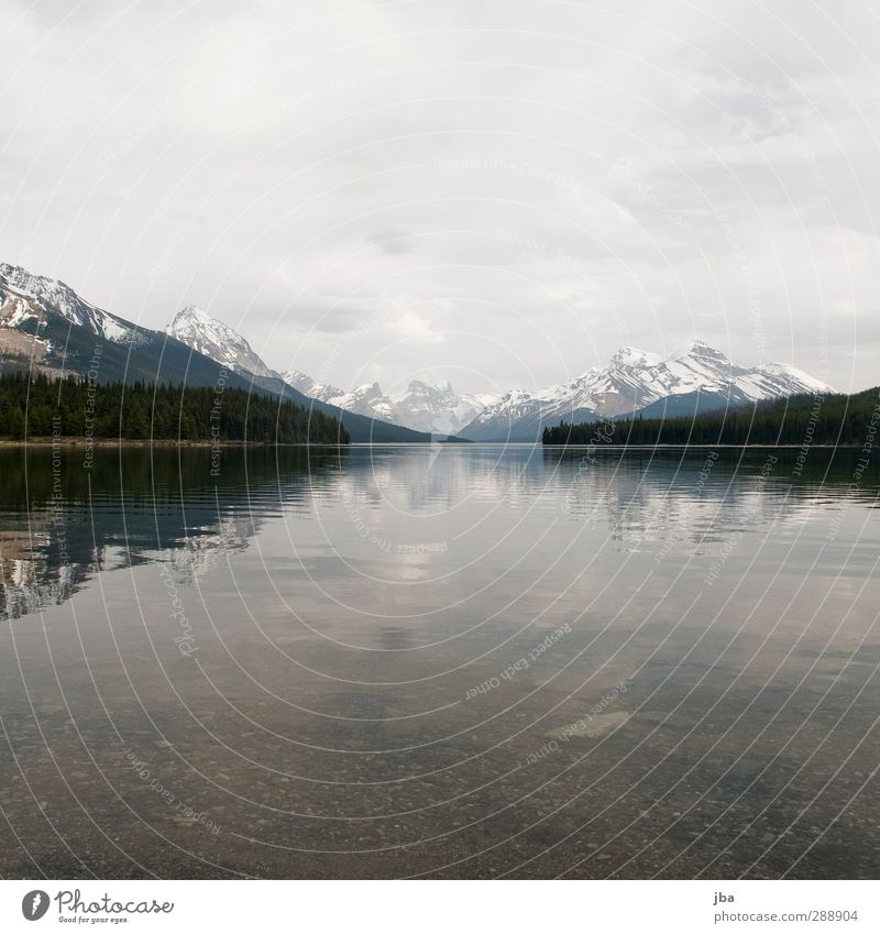 Maligne Lake Harmonious Relaxation Calm Tourism Far-off places Summer Mountain Hiking Nature Landscape Water Clouds Bad weather Forest Rock Peak Lakeside