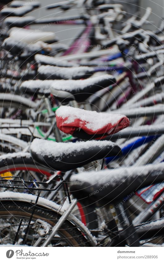 City White Red Winter Black Snow Moody Ice Bicycle Climate Wait Stand Esthetic Help Frost Simple