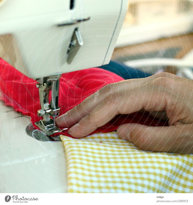 man at work [ Darn and Sewn ] Leisure and hobbies Handcrafts Sewing Stitching Craft (trade) Sewing machine Adults Life Men`s hand 1 Human being Patchwork Rag