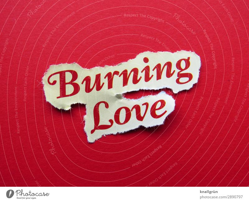 burning love Characters Signs and labeling Communicate Together Red White Emotions Happy Joie de vivre (Vitality) Euphoria Love Infatuation Desire Lust Sex Life