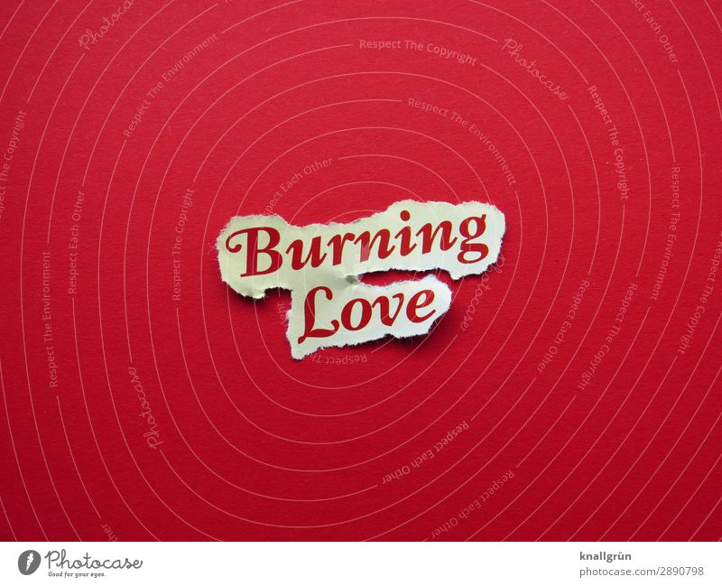 burning love Characters Signs and labeling Communicate Love Hot Red Turquoise Emotions Euphoria Sympathy Together Infatuation Desire Lust Sex Relationship