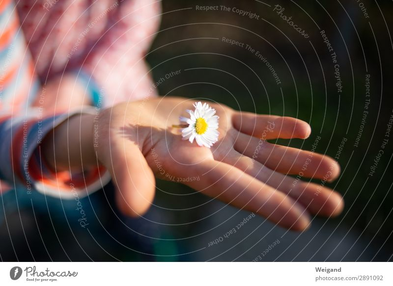 Mother's Day & Co Joy Life Harmonious Feasts & Celebrations Girl Boy (child) Infancy Hand Happy Natural White Bravery Acceptance Trust Safety Protection