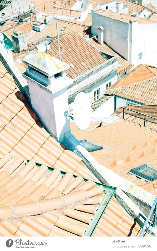 deliberate Lisbon Portugal Old town Roof Eaves Chimney Antenna Satellite dish Town Brick Mediterranean Red Summer vacation Colour photo