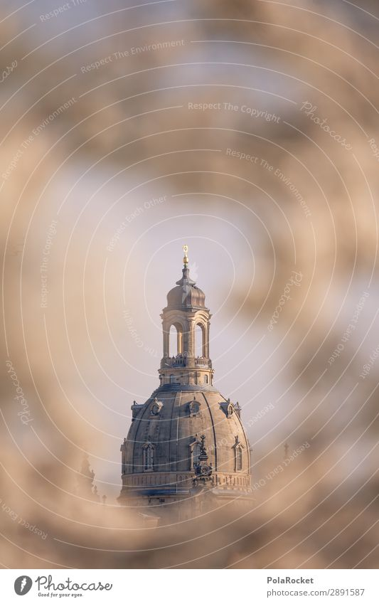 #A# Dresden Flower IV Environment Beautiful weather Esthetic Frauenkirche Saxony Germany Historic Historic Buildings Church Domed roof Cherry blossom Blossoming