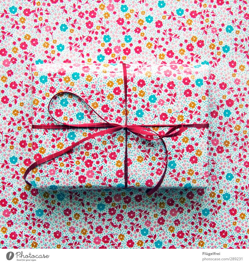 Hide Gifts Bow Anticipation Camouflage disguised Hiding place Packaging Christmas & Advent Feasts & Celebrations Red Flowery pattern Invisible Chameleon