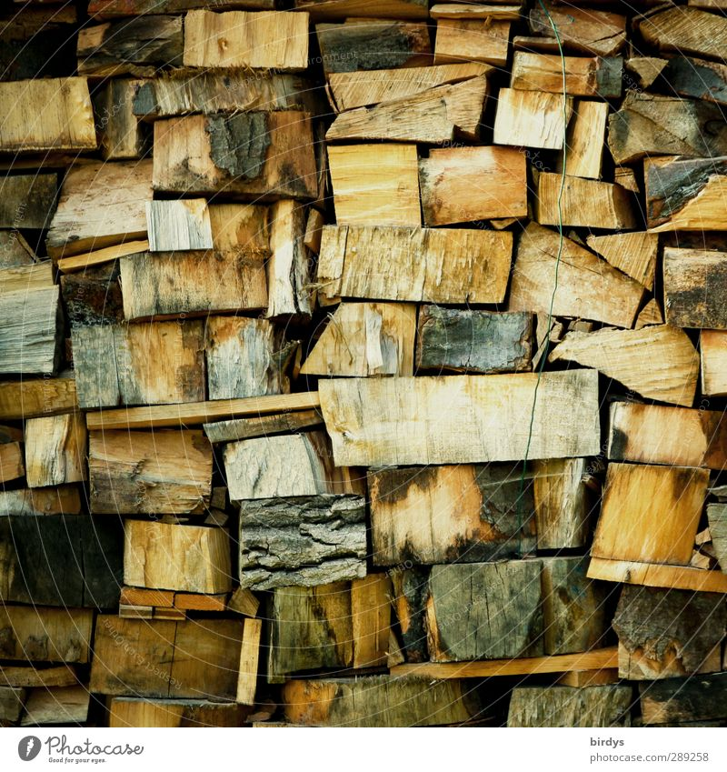 Warmth Wood Natural Authentic Energy Many Positive Sustainability Fuel Firewood Stack of wood