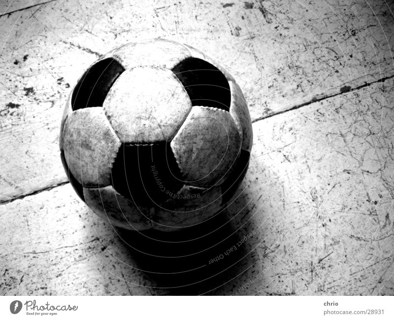 round leather Round Leather Wooden floor Leisure and hobbies Scratch mark Playing Flat (apartment) Structures and shapes Soccer Ball Black & white photo Sports