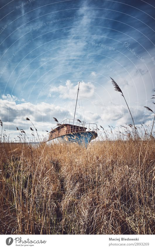 Retro toned picture of a shipwreck in the reeds Vacation & Travel Sightseeing Nature Landscape Sky Grass Wild plant Meadow Field Coast River bank Lake