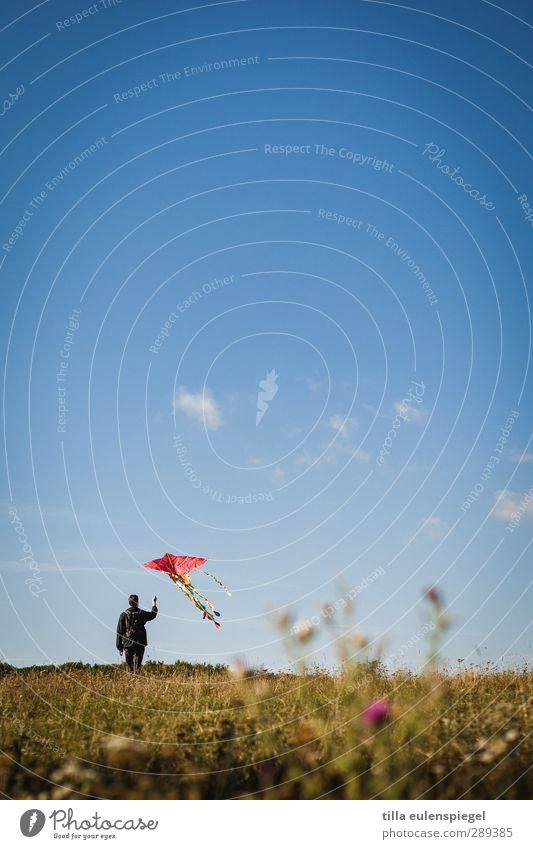 A climber. Leisure and hobbies Masculine Man Adults 1 Human being Sky Meadow Flying Stand Blue Infancy Kite Go up Departure Clouds Horizon Colour photo