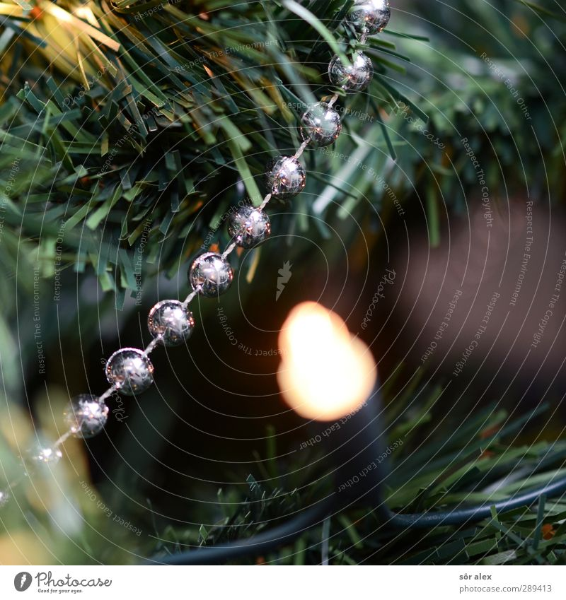 Photo number 250000 Event Kitsch Odds and ends Fairy lights Decoration Plastic Illuminate Glittering Green Silver Happy Happiness Contentment