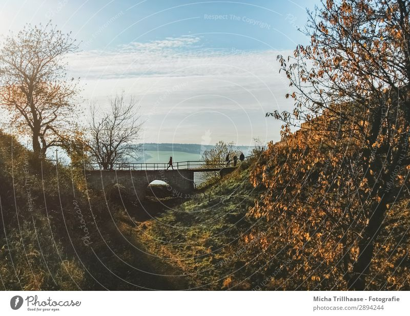 Small bridge in the autumn landscape Tourism Trip Nature Landscape Sky Clouds Sun Sunlight Autumn Beautiful weather Tree Leaf Hill Castle Bridge Going