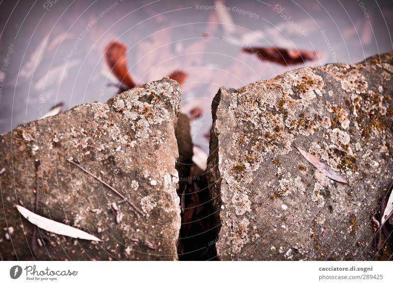 the beginning of Armageddon Environment Water Autumn Rock Wall (barrier) Wall (building) Stone Column Crack & Rip & Tear Threat Dark Sharp-edged Simple Broken