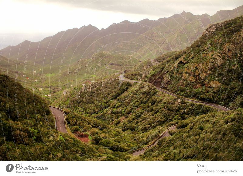 The way is the goal Nature Landscape Plant Earth Sky Clouds Grass Bushes Hill Rock Mountain Valley Tenerife Street Green Colour photo Subdued colour