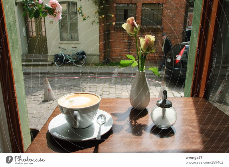A place of happiness Hot drink Latte macchiato Café au lait Crockery Cup Spoon Sugar bowl Happy Summer Table Window Eating Drinking Hanseatic City Wismar