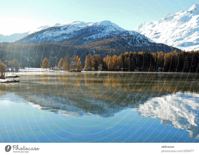 Mountains with icing sugar Environment Nature Landscape Plant Elements Water Sky Cloudless sky Winter Tree Rock Alps Peak Snowcapped peak Coast Lakeside