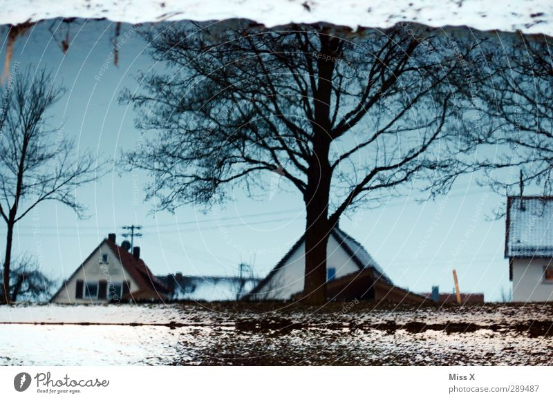 winter Water Winter Snow Tree Brook Cold Water reflection Roof Colour photo Exterior shot Deserted Twilight Reflection