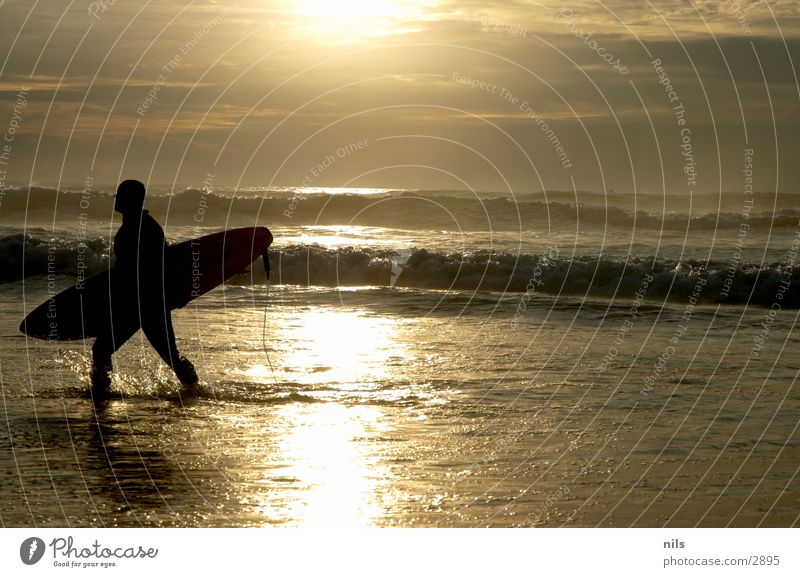 Have A Nice Surf Surfer Ocean Sunset Waves Surfboard Surfing Going Sports Water leash Silhouette Inject
