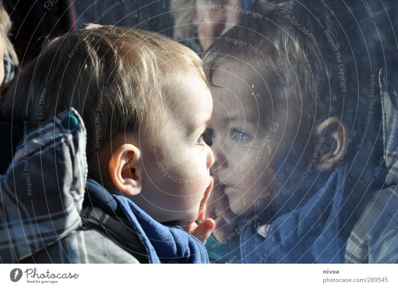 Toddler is reflected in the window Human being Masculine Child Boy (child) Head Hair and hairstyles Eyes Ear Nose 1 1 - 3 years Environment Landscape Sun