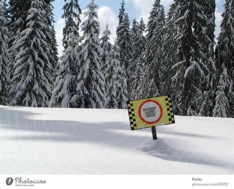 Closed runway Barred Winter Forest Snowscape Ski run Mountain Ice Deep snow Powder snow Warning sign Prohibition sign Bans Winter forest Warning colour