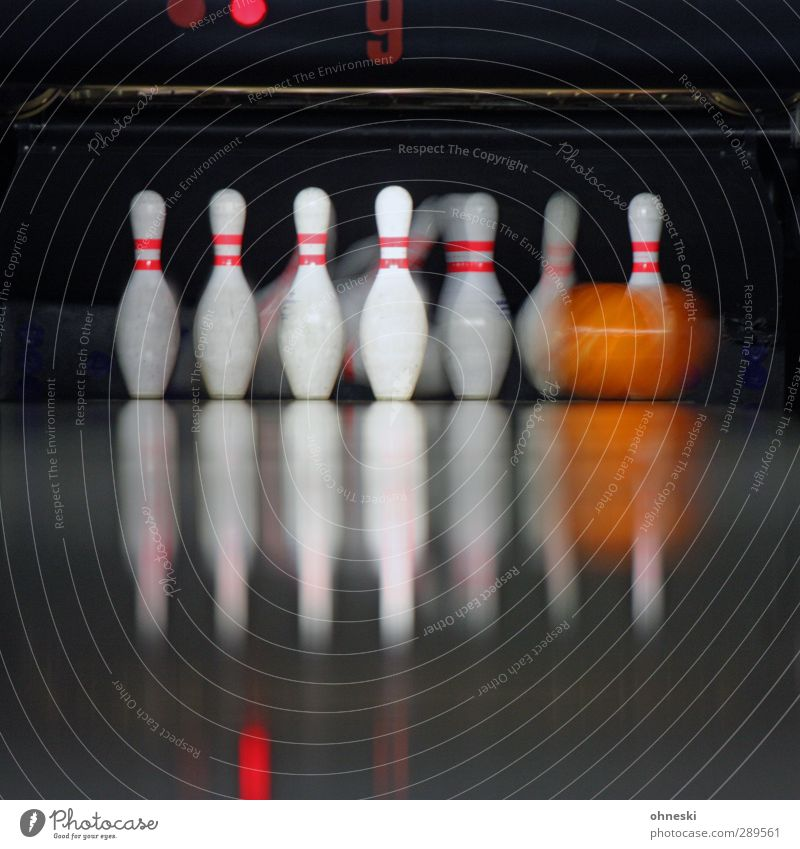 bowling Leisure and hobbies Playing Nine-pin bowling Sports Bowling Bowling alley Bowling ball Skittle Movement Happy Colour photo Interior shot