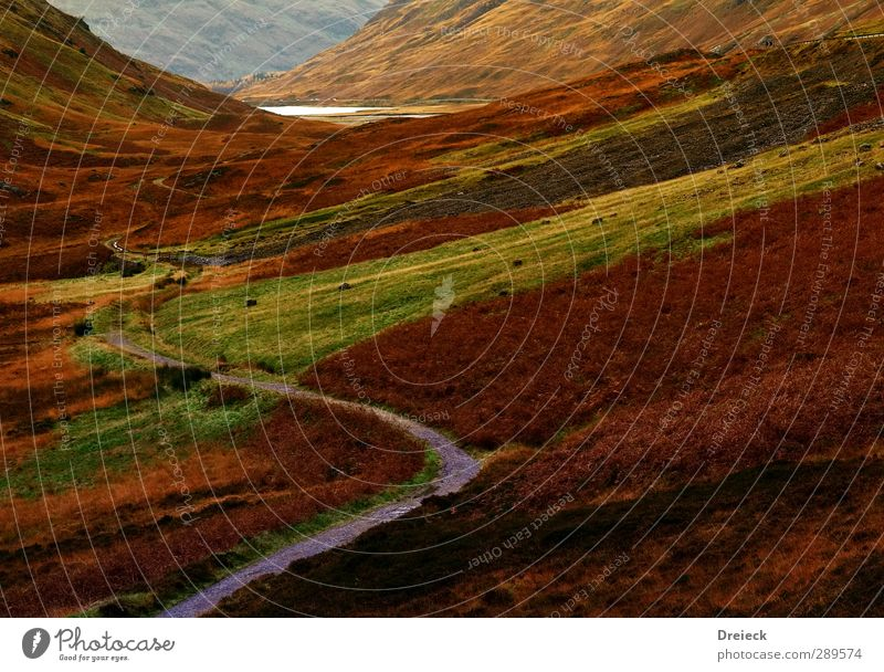 Nature Green Red Landscape Black Yellow Environment Mountain Autumn Brown Orange Gold Hiking Hill Canyon Scotland