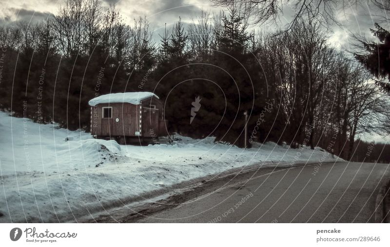silent night Nature Landscape Clouds Winter Ice Frost Snow Tree Forest Hut Street Site trailer Moody Safety Protection Calm Loneliness Colour photo