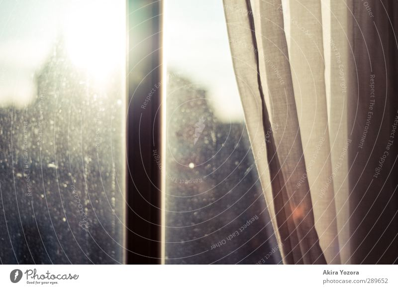 Good bye Summer Window Sun Sunlight Back-light Silhouette Drape Curtain