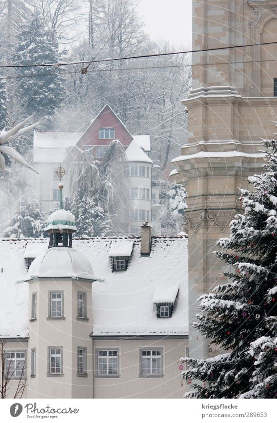 The dream of a white Christmas Winter Ice Frost Snow Flower Small Town Downtown Old town Deserted House (Residential Structure) Church Dome Tower Building