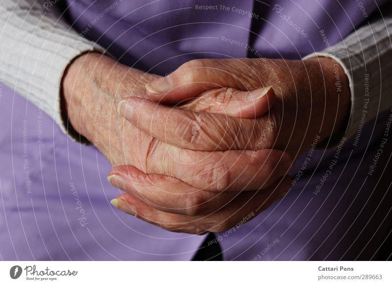 Folded hands Feminine Female senior Woman Grandmother Senior citizen Life 60 years and older Sweater Cloth Apron Touch Make Old Thin Near Fingernail Fingers