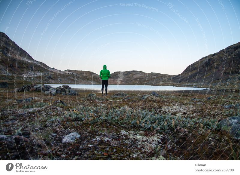 Green(man)land Masculine 1 Human being 18 - 30 years Youth (Young adults) Adults Nature Landscape Water Sky Sunrise Sunset Moss Hill Rock Deserted Jacket