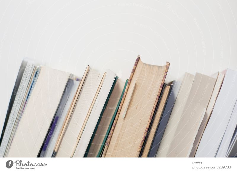 read Book Library Reading Discover Experience Serene Living or residing pages Subdued colour Interior shot Close-up Detail Pattern Copy Space bottom