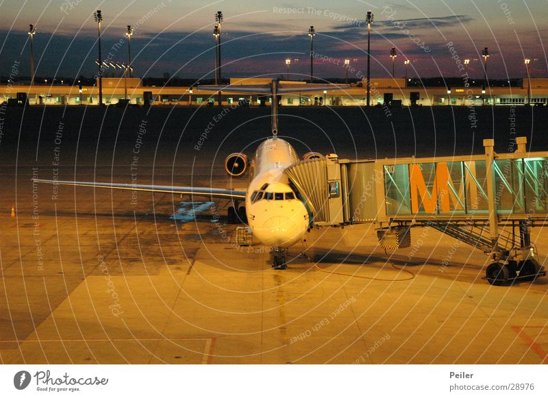 Munich Airport Sunset Sunrise Airplane Yellow Airbus Orange Blue Gate