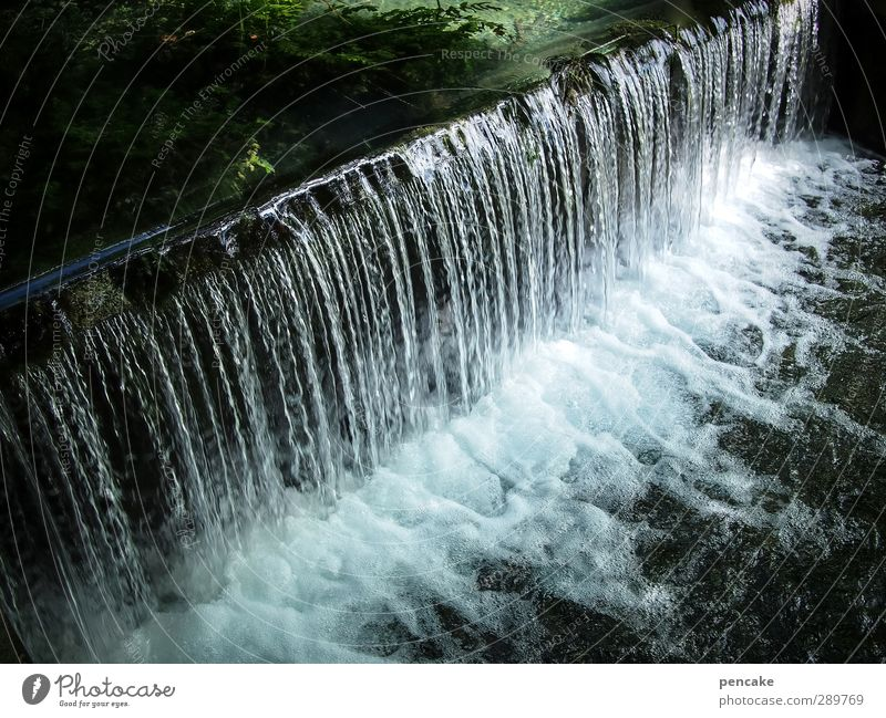 Nature Water Spring Moody Climate Elements Brook Waterfall Climate change Marvel Humanity Inhibition Surplus