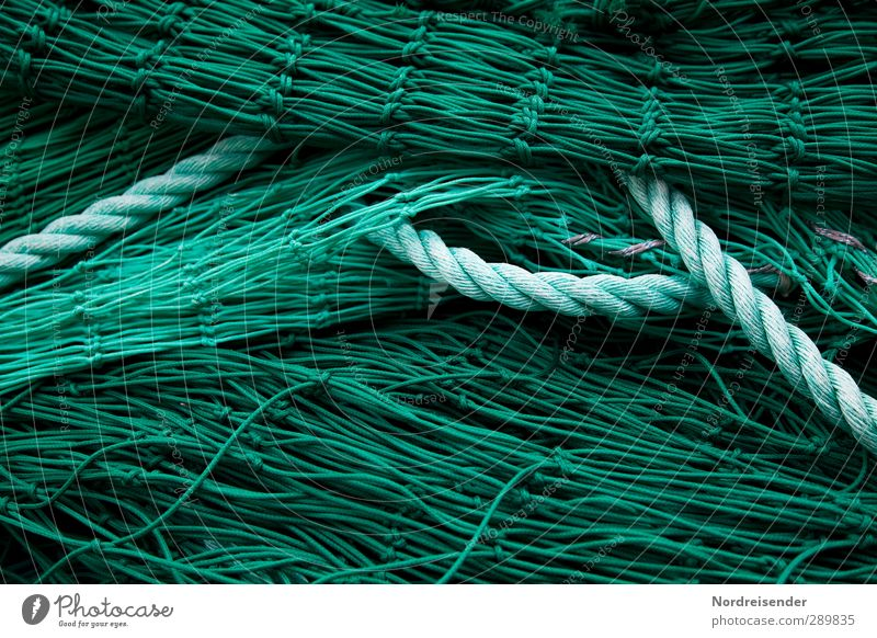 green Work and employment Profession Net Green Network Arrangement Planning Fishery Fishing net Rope Background picture Structures and shapes Colour photo