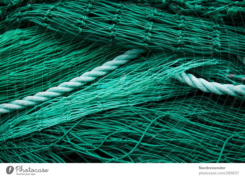 green Economy Net Network Green Complex Arrangement Fishery Fishing net Fish bone Rope Background picture Structures and shapes Colour photo Exterior shot