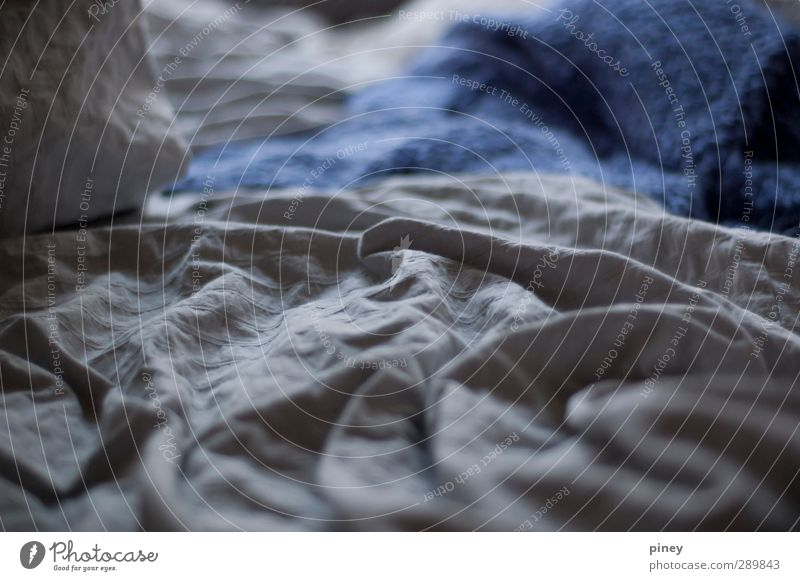 sleep Waves Living or residing Bed Room Sleep Blue Gray Serene Calm Dream sleepy tired Duvet Blanket Subdued colour Interior shot Close-up Detail Evening