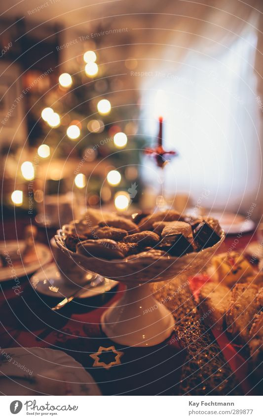 Christmas & Advent Joy Warmth Style Happy Feasts & Celebrations Together Flat (apartment) Contentment Living or residing Elegant Decoration Esthetic Table Warm-heartedness Candy
