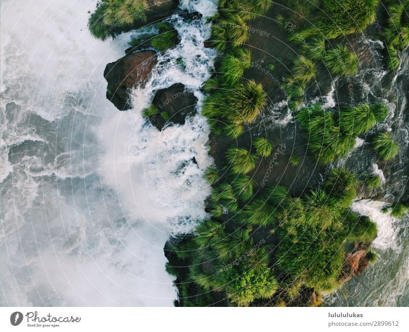 This is a waterfall II. Vacation & Travel Tourism Adventure Far-off places Iguazu Falls Iguacu NP Water Waterfall Nature Nature reserve Green Foliage plant