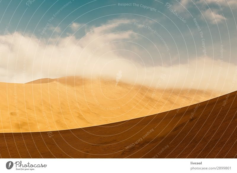 desert dunes II , china Sky Landscape Relaxation Clouds Loneliness Sand Park Vantage point Peace Asia Blue sky China Slowly Grit Xinjiang Taklimakan desert