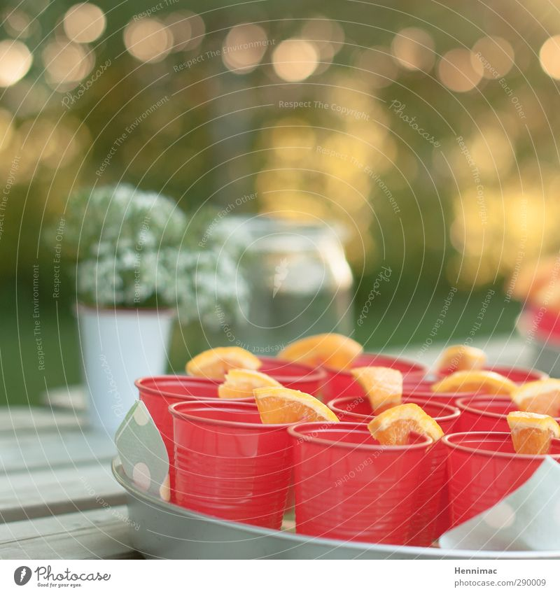 Summer Red Spring Feasts & Celebrations Party Garden Food Orange Lifestyle Happiness Decoration Nutrition Beverage To enjoy Drinking Bar