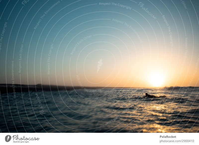 #A# coming back Art Esthetic Surfing Surfer Surfboard Surf school Ocean Swell Surface of water Relaxation Idyll Colour photo Subdued colour Exterior shot Detail