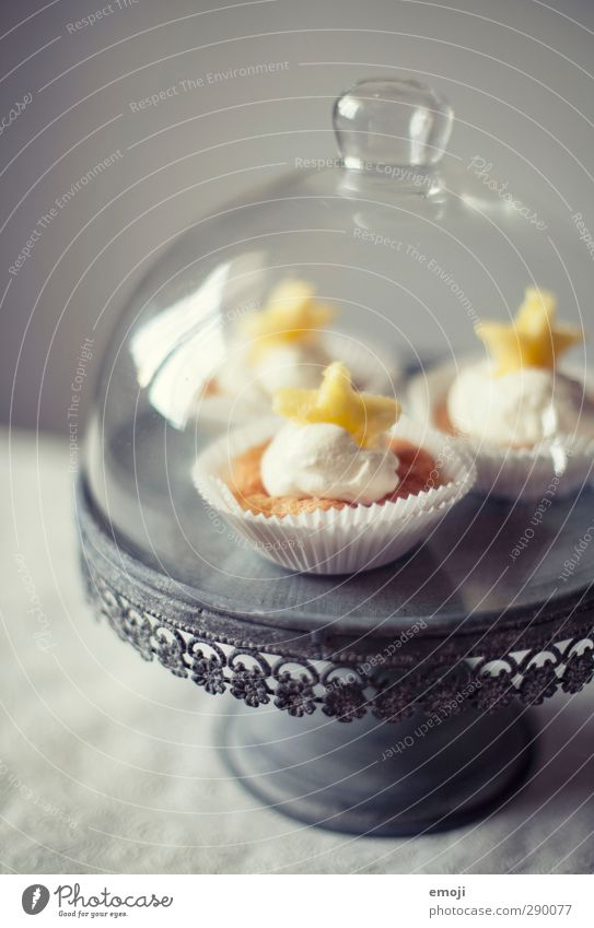 intents Dessert Candy Nutrition Picnic Finger food Crockery Cake plate Delicious Sweet Muffin Cupcake Colour photo Interior shot Deserted Neutral Background Day
