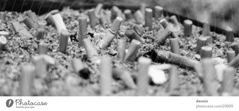 Smoking Truck Obscure Cigarette Cigarette Butt