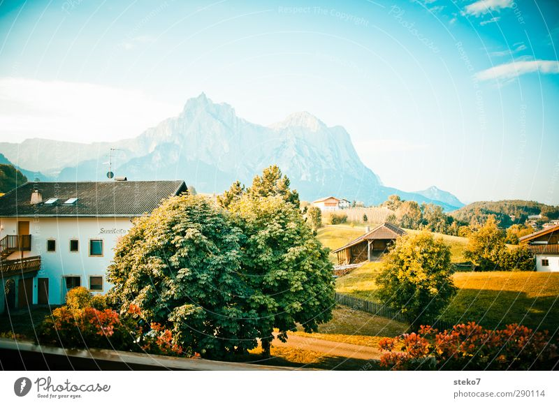 Heimatfilm background Sky Summer Beautiful weather Tree Meadow Alps Mountain Village Detached house Balcony Retro Blue Green Idyll Tourism Vacation & Travel