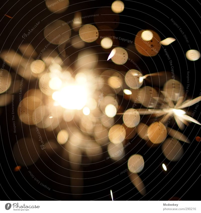 Beautiful White Colour Black Yellow Gray Bright Metal Brown Exceptional Orange Gold Crazy Circle Fire Star (Symbol)