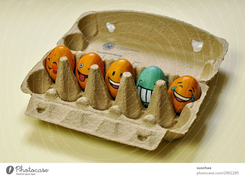 egg-gang in egg box Egg Easter egg Painted Art Tradition Feasts & Celebrations Smiley Laughter Joke Humor Funny Joy Face Clique Absurdity Eggs cardboard Spring