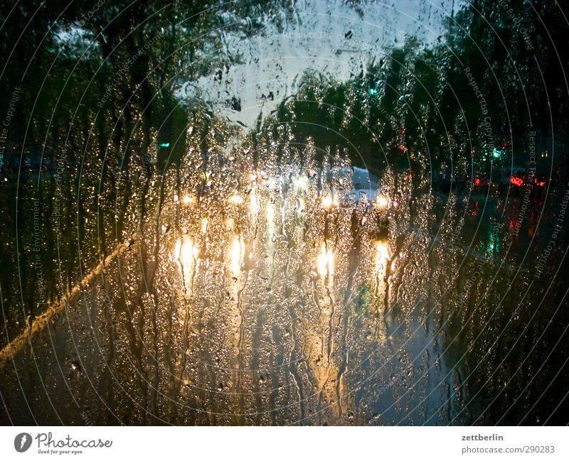 rain Transport Means of transport Passenger traffic Rush hour Road traffic Motoring Street Lanes & trails Vehicle Car Stand Hope Belief Humble Sadness Pain