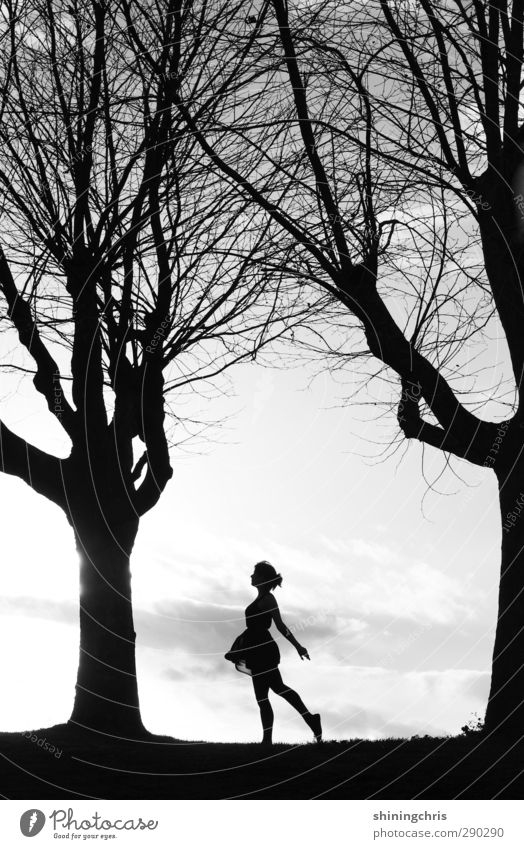 100 ! Feminine Young woman Youth (Young adults) Body Human being 18 - 30 years Adults Nature Landscape Clouds Sunlight Tree Dress Going Walking Dance Free